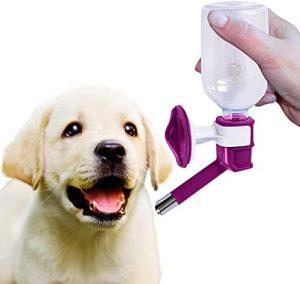 SunGrow No Drip Pet Water Dispenser Bottle