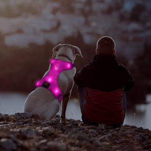 Domi LED Dog Harness, USB Rechargeable No Pull Pet Vest Harness