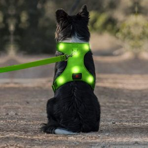 Domi LED Dog Harness