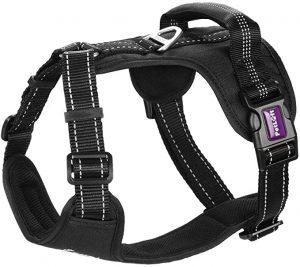 PETLOFT Big Dog Harness