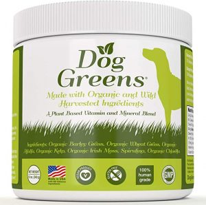 Dog Greens- Organic and Wild Harvested Vitamin and Mineral Supplement