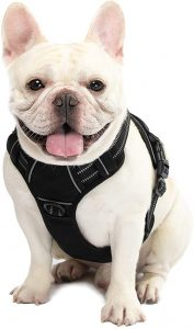 ATOPARK Dog Harness No-Pull Pet Harness