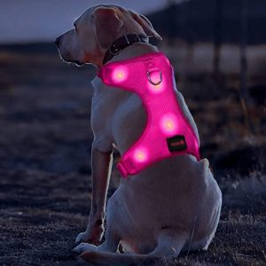 BSEEN LED Dog Harness – Best for Low-Light Running