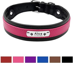 PET ARTIST Personalised Padded Leather Dog Collar