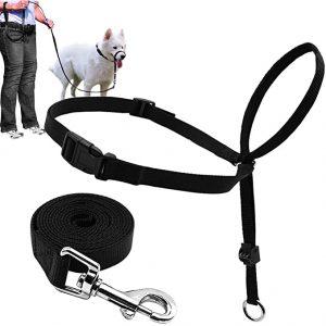 Barkless Dog Head Collar - Adjustable and Padded Head Halter