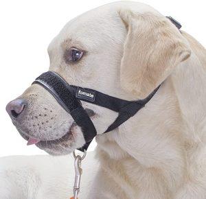 FOMATE Training Muzzle