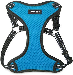 Voyager Step-In Flex Dog Harness – Best for Small Dogs