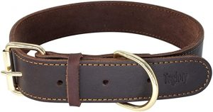 Taglory Genuine Leather Dog Collar Brown