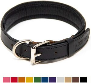 Logical Leather Padded Leather Dog Collar
