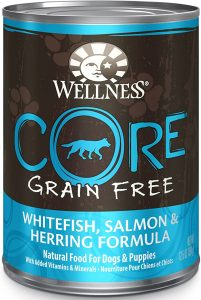 Wellness CORE Natural Grain-Free Canned