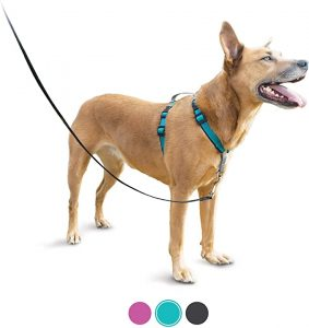 PetSafe 3-in-1 Harness – Best Lightweight Harness