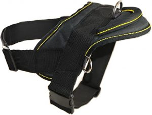 Dean and Tyler DT Dog Harness, Black with Yellow Trim