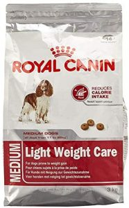 Maltbys' Stores 1904 Limited 12kg Royal Canin BEAGLE ADULT Breed Health Nutrition Dog food