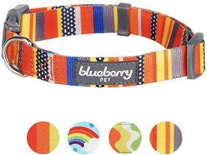 """Blueberry Pet Nautical Flags Inspired Designer Basic Dog Collar, Neck 18""""-26"""", Large, Collars for Dogs"""