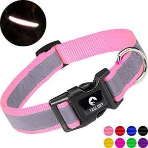 Taglory Reflective Dog Collar, Adjustable Nylon Dog Collar for Small Dogs, Baby Pink
