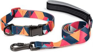 Puccybell Nylon dog collar and dog leash (1.5 m) in a set, geometric design, for small, medium, and large dogs HLS008 (M, Orange colorful)