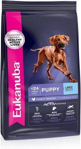 Eukanuba — Large Breed Puppy Dry Dog Food