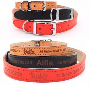 Personalised Custom Leather Dog Puppy Collar | Design Your Unique Pet ID Tag | Laser Engraved - Size 1, Red
