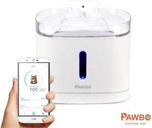 Pawbo Spring: Smart pet drinking water fountain, filter, app and wifi camera, for multiple cat & dog