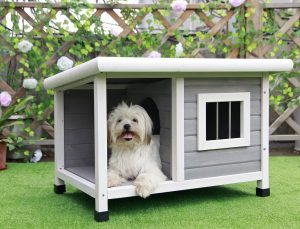 Petsfit Outdoor Dog House with Steel Window, Kennels for Outside, One Room and One Lounge for Pets to Sleeping and Resting, Brick Asphalt Roof Wooden Dog House, 85cm x 62cm x 58cm, Light Grey