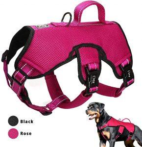 Didog Multi-Use Escape Proof Dog Harnesses for Escape Artist Dogs