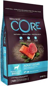 Wellness CORE Ocean Dog Food Dry Grain Free - Salmon & Tuna, 10 kg