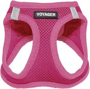 Voyager Step-in Air Dog Harness - All-Weather Mesh for Small and Medium Dogs