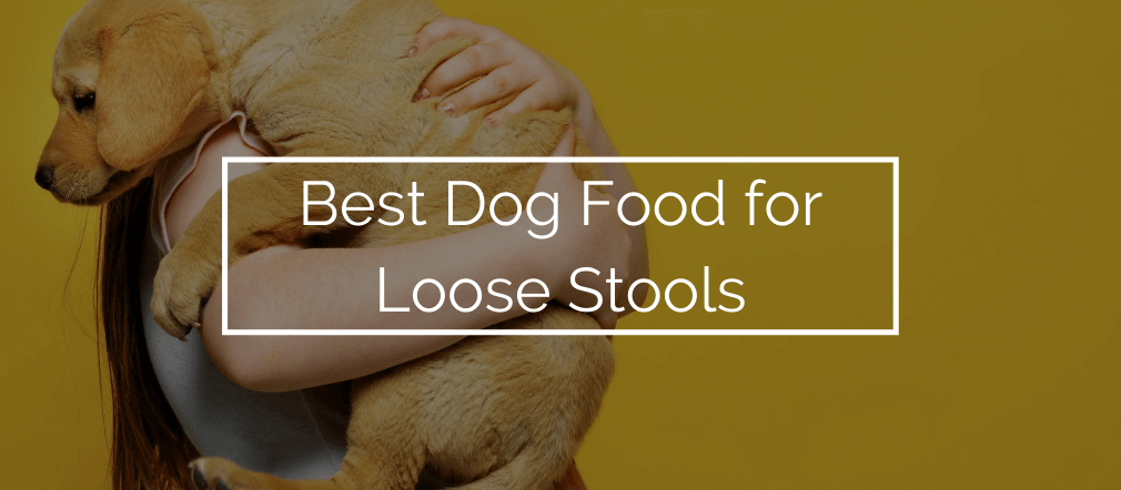 Best Dog Food for Loose Stools