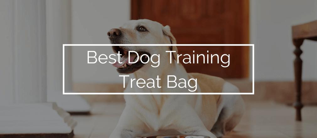 Best Dog Training Treat Bag