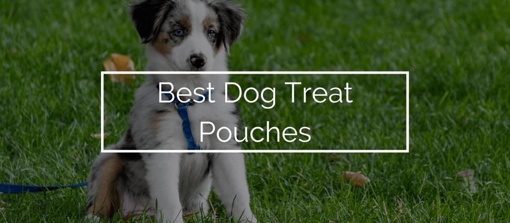 Best Dog Treat Pouches