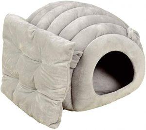 dog bed for havanese
