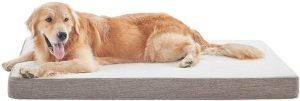 BDEUS Gel-Infused Memory Foam Pet Bed