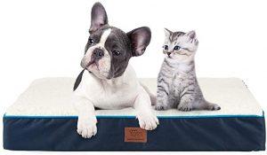 dog bed for beagle