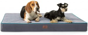 dog bed for labradors