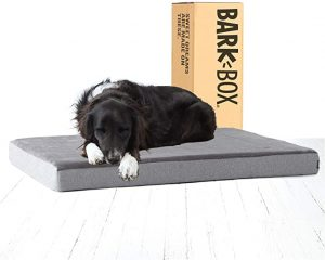 Barkbox Memory Foam Platform Dog Bed for Joint Relief, Cuddler and includes Squeaker Toy