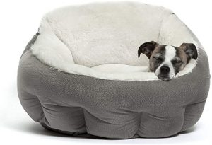 BEST FRIENDS BY SHERI SMALL DOG BED
