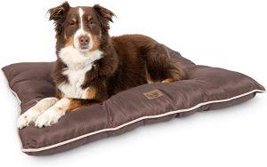 Pet Craft Supply Super Snoozer Calming Indoor / Outdoor All Season Dog Bed