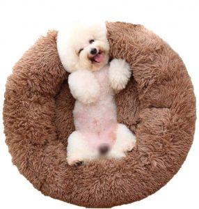 VIVI BEAR DOG BED