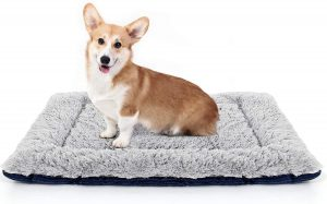 LOLO DOG CRATE BED