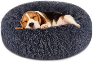 FOCUSPET DOG BED