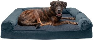 Furhaven Sofa-styled Memory Foam Pet Bed