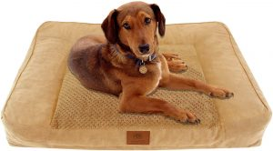 AMERICAN KENNEL CLUB ORTHOPEDIC & MEMORY FOAM COUCH SOFA STYLE PET BED