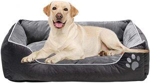 dog bed for border collie