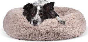 JOEJOY CALMING DOG BED