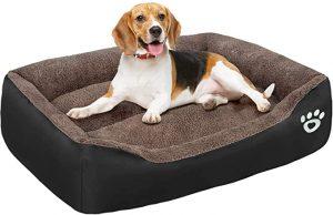 FAREYY DOG BEDS