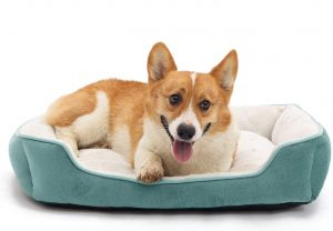 JEMA Dog Beds for Medium Dogs or Large Cats, Soft Durable Warming Pet Bed