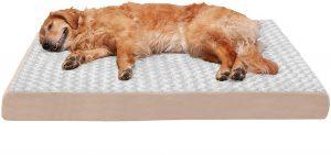 FURHAVEN PET- TRADITIONAL ORTHOPEDIC FOAM MATTRESS DOG BED