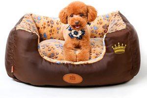 PLS BIRDSONG SWEETSPOT BOLSTER DOG BED
