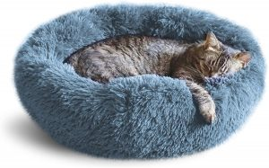 Whiskers & Friends Cat Dog Bed