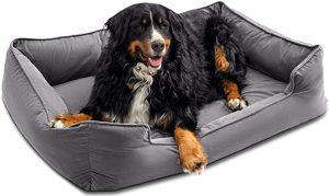 PETSBAO PREMIUM ORTHOPEDIC DOG BED & LOUNGE